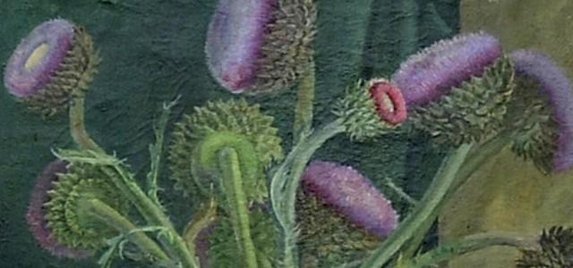 Acciones para dar a conocer las obras de las mujeres artistas que forman parte de la colección provincial.